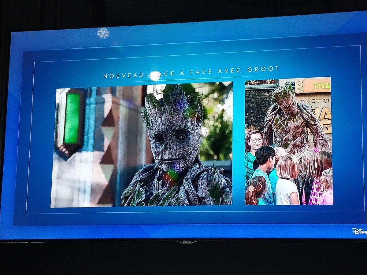 Groot Disneyland Paris